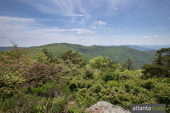 Hike the Appalachian Trail from Tesnatee Gap to the view-packed Cowrock Mountain in North GA