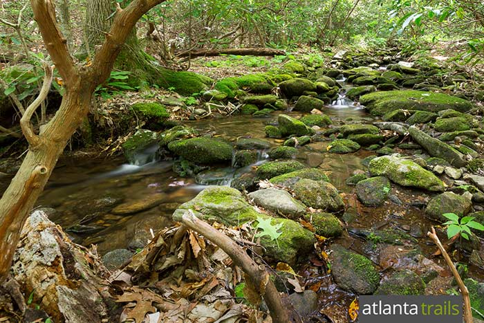Hike the mossy, stream-filled Byron Reece Trail at Neels Gap in North Georgia, climbing to the Appalachian Trail at Blood Mountain