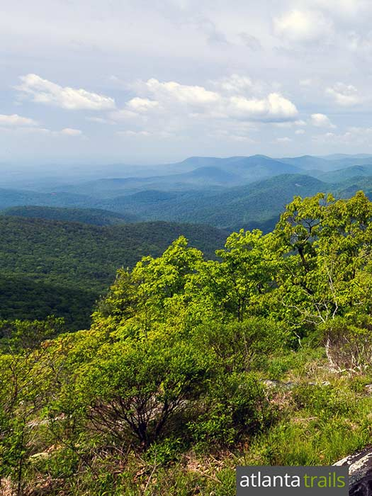 Hike the Appalachian Trail at Tensatee Gap, climbing to stunning views from the Cowrock Mountain in North Georgia