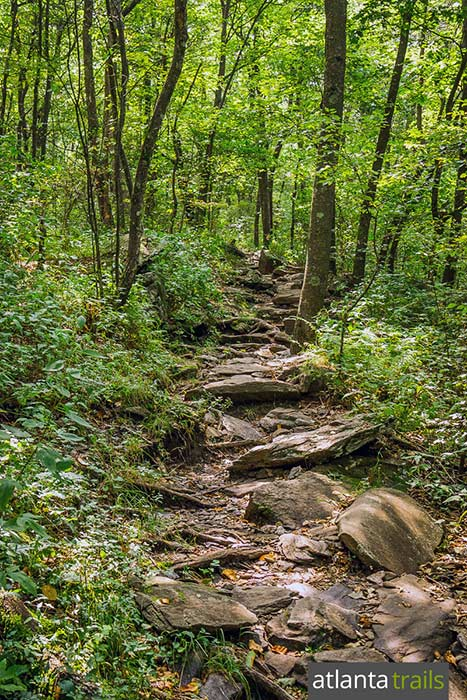The Appalachian Trail makes a rocky, rooty ascent to Springer Mountain, the trail's southermost end on a 2200+ mile journey