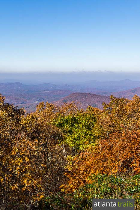 Hike the Appalachian Trail to stunning views from Springer Mountain from the lush Three Forks creek valley