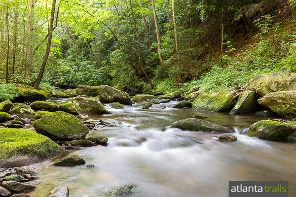 Hike the Lower Conasauga River Trail in the Cohutta Wilderness