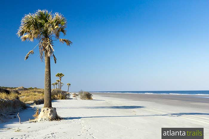 Cumberland Island camping, hiking and backpacking guide