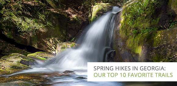 Best Spring Hikes in Georgia: Our Top 10 Favorite Trails