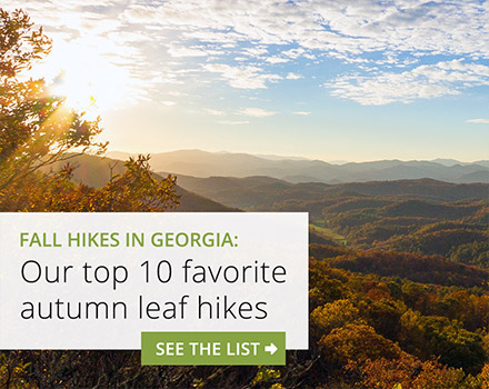 North Georgia fall leaf hikes: our top 10 favorite autumn hiking trails