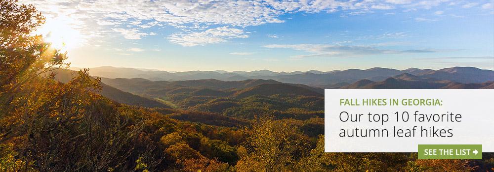 North Georgia fall leaf hikes: our top 10 favorite autumn hiking trails