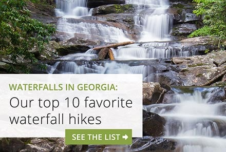 North Georgia waterfalls: our top ten favorite hiking trails