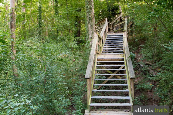 The Morningside Nature Preserve trails depart the parking area, winding down wooden steps deeper into the preserve