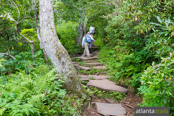 Trail etiquette: how to yield, stay safe, preserve the wilderness (and have fun!)