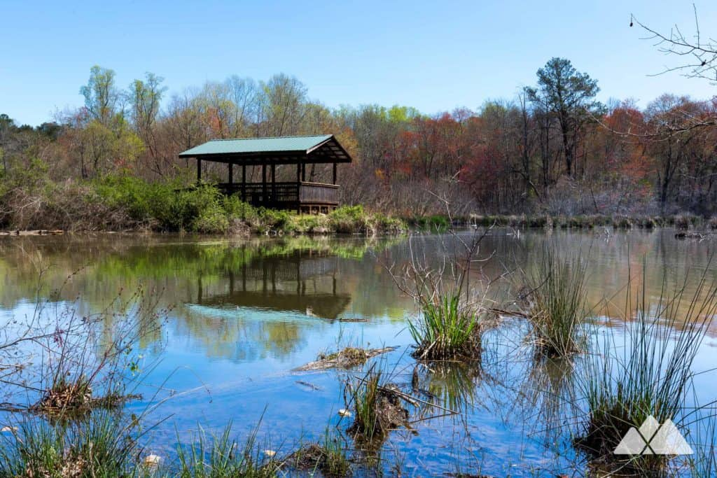 Explore the Bird Berry Trail at Fort Yargo State Park near Athens, GA, a short kid-friendly hiking and nature trail with beautiful scenic views