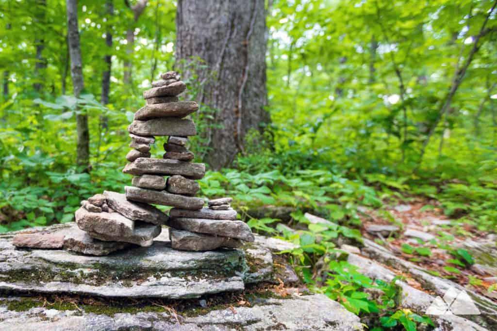 Appalachian Trail: Hightower Gap to Cooper Gap