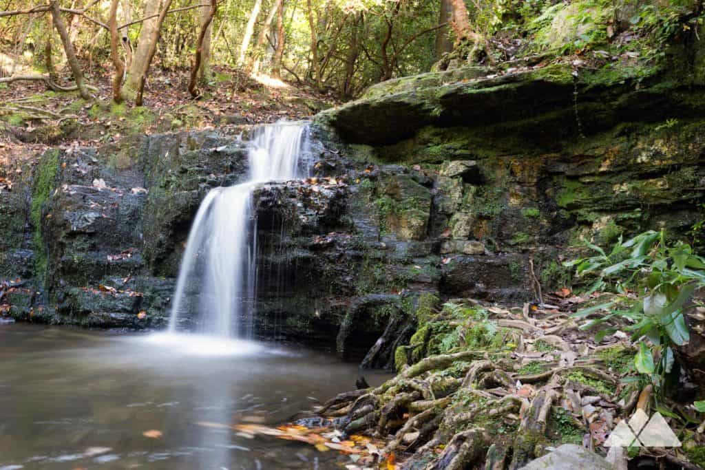 Cascade Falls spills from a mossy cliff along the Pine Mountain Trail
