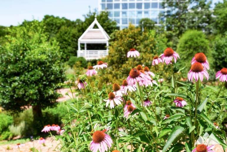 State Botanical Garden of Georgia: trail running & hiking near Athens