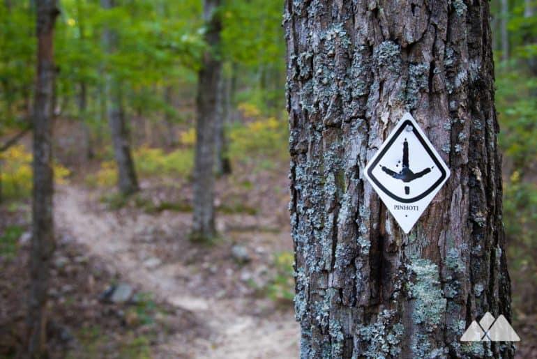 Pinhoti Trail from Snake Creek Gap