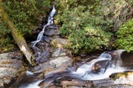Dukes Creek Falls Trail in North Georgia