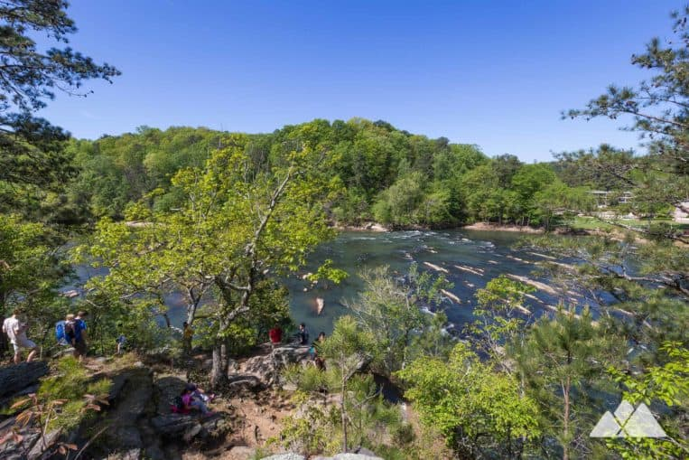 Hike the East Palisades Trail on the Chattachoochee River near Atlanta, exploring a towering grove of bamboo on the river's banks