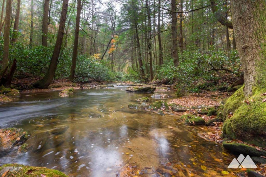 Hike to Springer Mountain, following the Appalacahan Trail through the lush, creek-filled Three Forks valley near Ellijay, Georgia