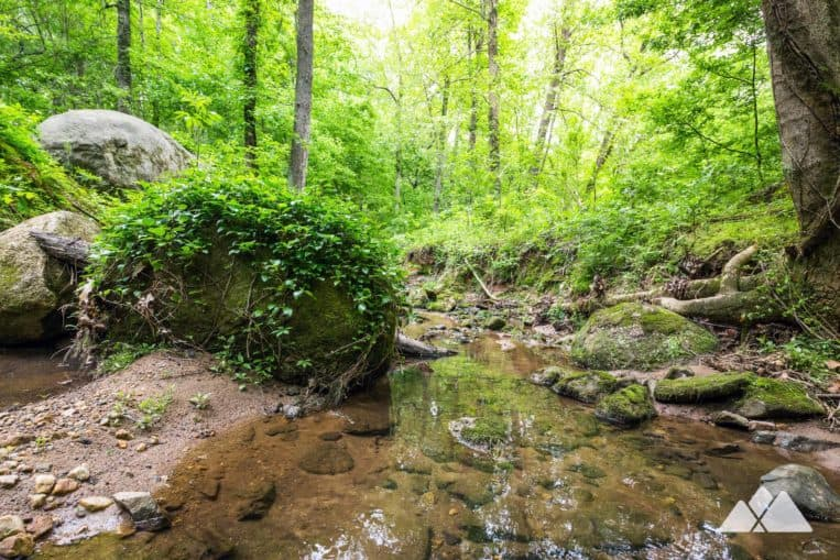 Cascade Springs Nature Preserve: top hiking and running trails in Atlanta