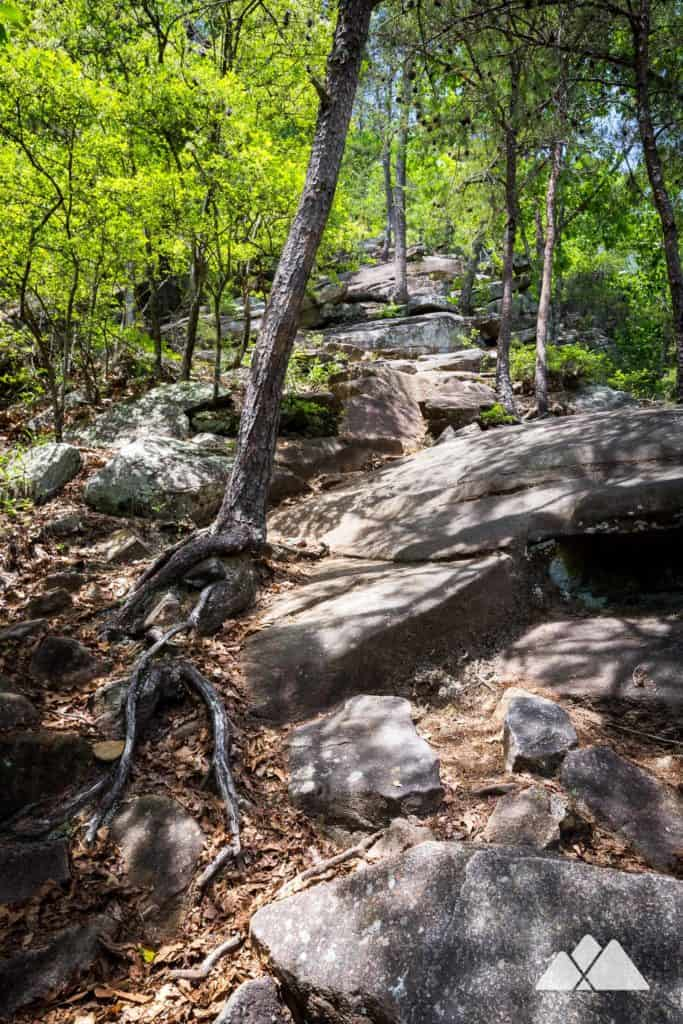 Hike the Sliding Rock Trail at Tallulah Gorge, following a steep, difficult, boulder-filled trail to the rock slide waterfall on the gorge floor