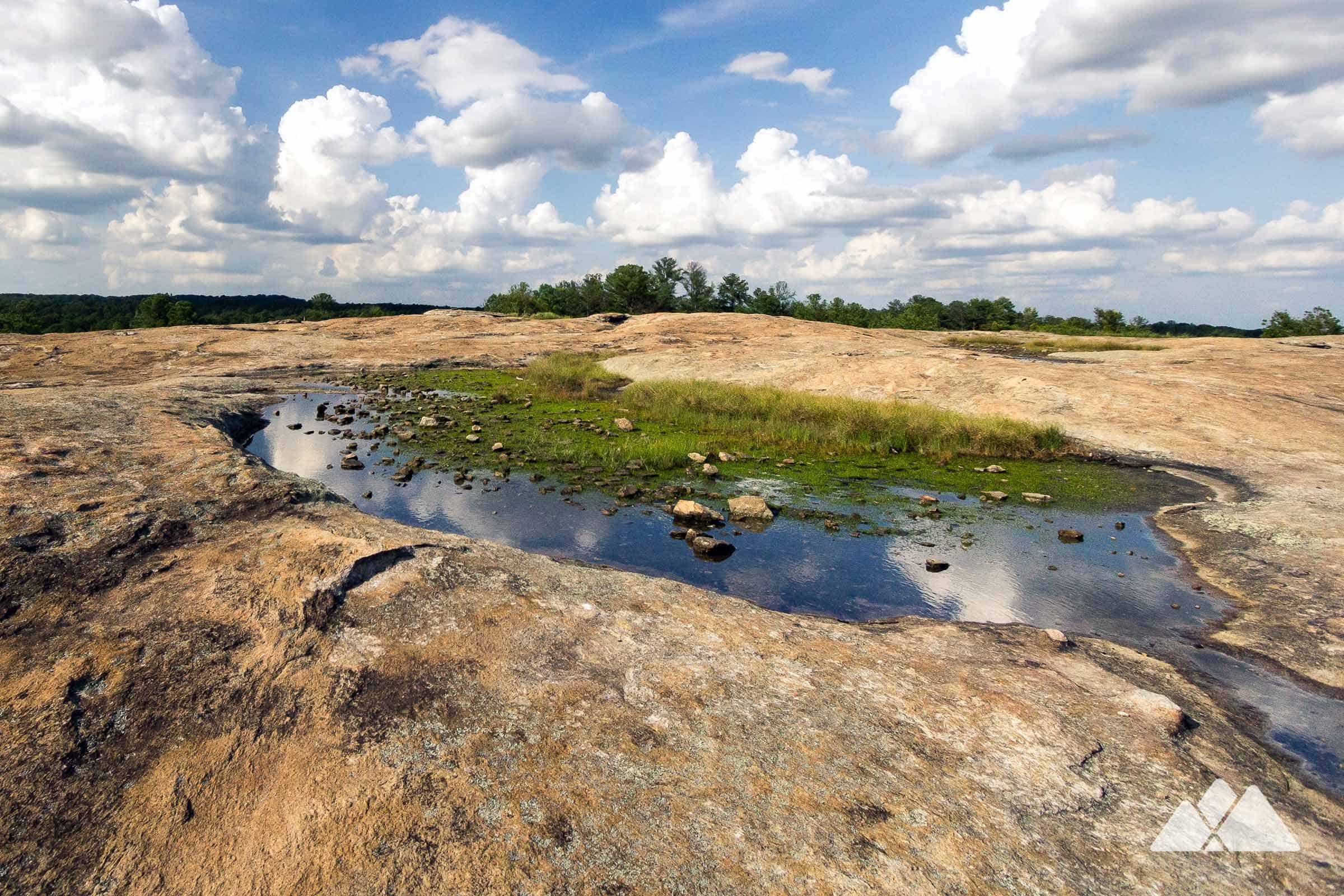 Picture of: Arabia Mountain Top Trail