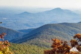 Tray Mountain: hiking the Appalachian Trail from Unicoi Gap and Indian Grave Gap