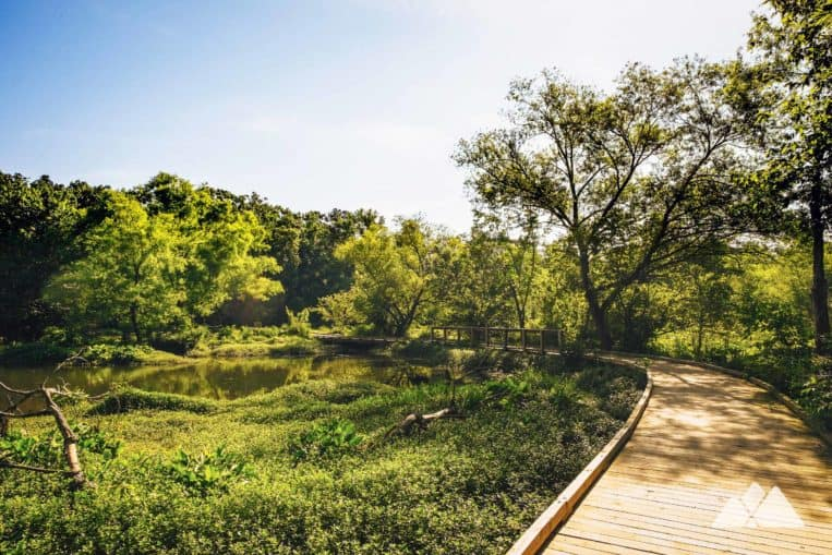 Explore the urban nature preserve at Atlanta's Constitution Lakes Park, where a duo of marshy lakes are home to a variety of wildlife