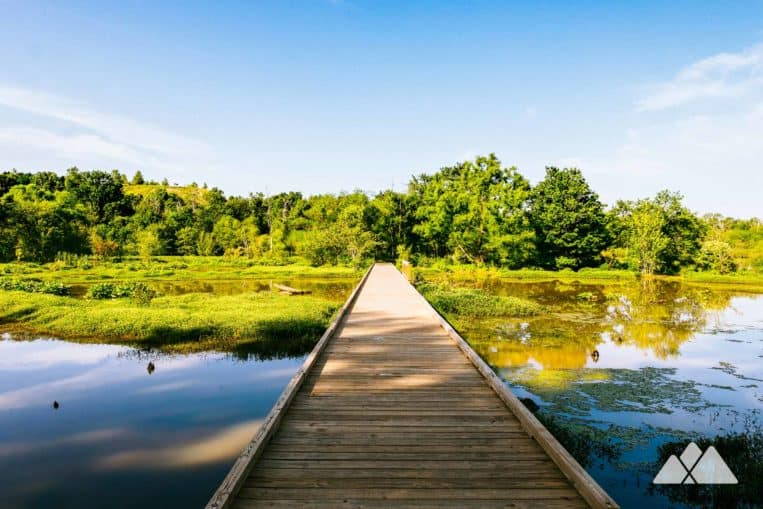 Hike Atlanta's Constitution Lakes Park to scenic lake views from extended boardwalks