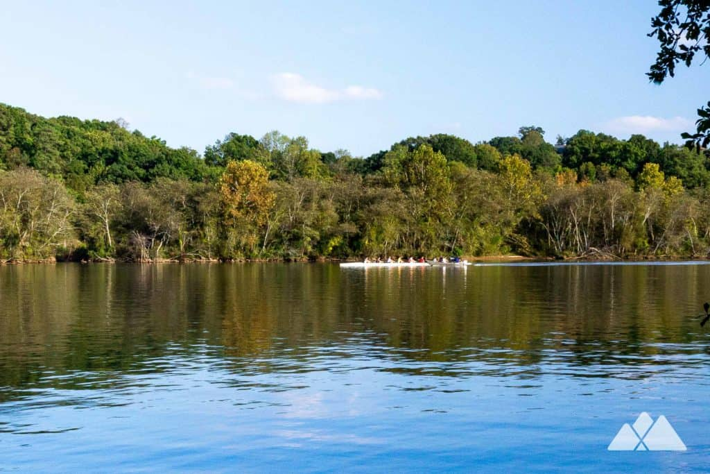 Hike the Gold Branch Trail at Bull Sluice Lake, exploring a beautiful wildlife-filled forest on the banks of the wide-flowing Chattahoochee River near Roswell, GA
