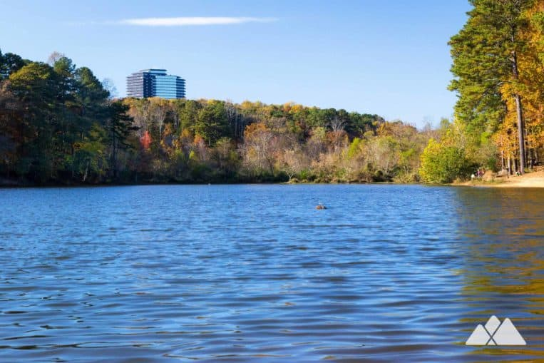 Top places to run in Atlanta: run the Murphey Candler Park Trail to beautiful lake views in Brookhaven
