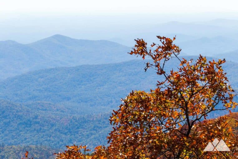 Rabun Bald: hike the Bartram Trail from Beegum Gap to some of Georgia's best mountain views
