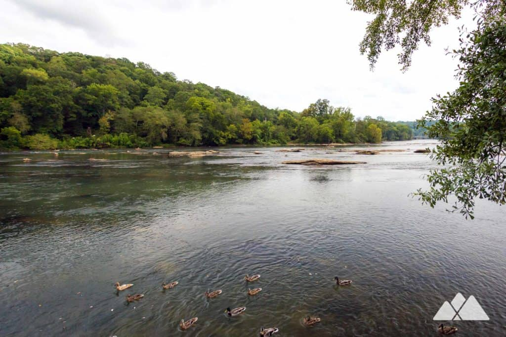 Hike to beautiful Chattahoochee River views at Island Ford Park near Roswell, Georgia