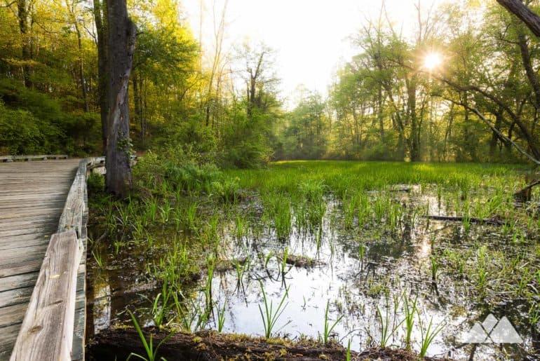 Suwanee Greenway: run from Suwanee Creek Park just north of Atlanta