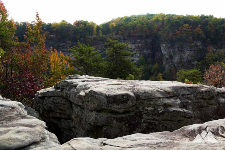 Hike to stunning views from towering overlooks at Cloudland Canyon State Park near Chattanooga, TN
