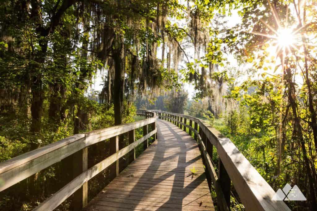 Phinizy Swamp Nature Park