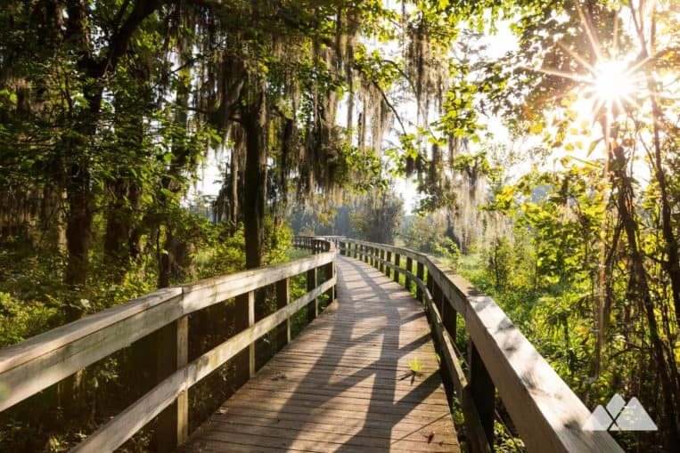 Phinizy Swamp Nature Park: top hikes and running routes near Augusta, Georgia
