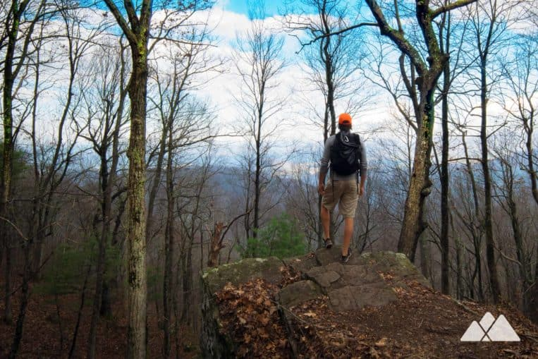 Top Appalachian Trail hikes in GA: follow the AT northbound from Hogpen Gap to Unicoi Gap, exploring a beautiful North Georgia forest