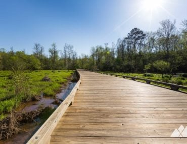 George Pierce Park: running the Ivy Creek Greenway