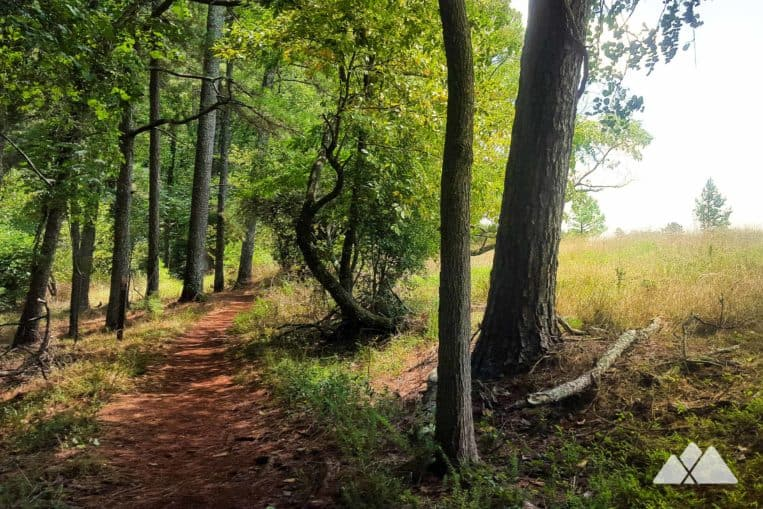 Little Mulberry Park: top in-town hikes and running trails near Atlanta, GA