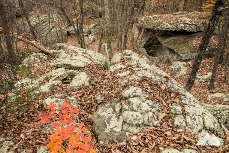 Hike the Rocktown Trail in North Georgia, visiting enormous sculpted rock outcrops and a popular bouldering area with climbers