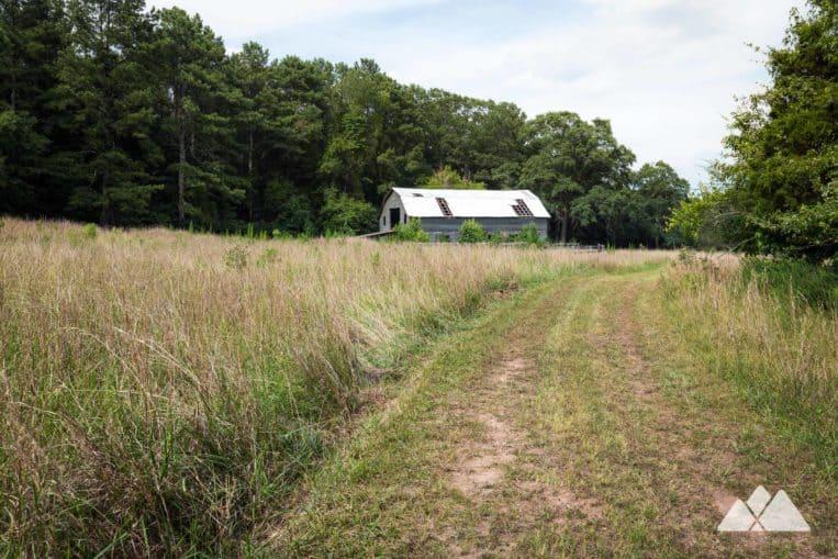 Arabia Mountain Cascade and Wilburn Farm Trail: top hiking trails near Atlanta, GA