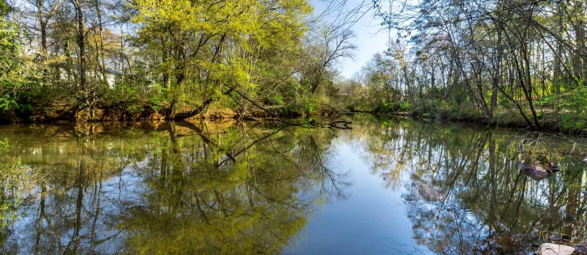 Hiking near Athens, GA: our favorite hikes and running trails