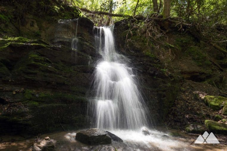 Warwoman Dell: hike to tumbling waterfalls and beautiful wilflowers near Clayton, GA