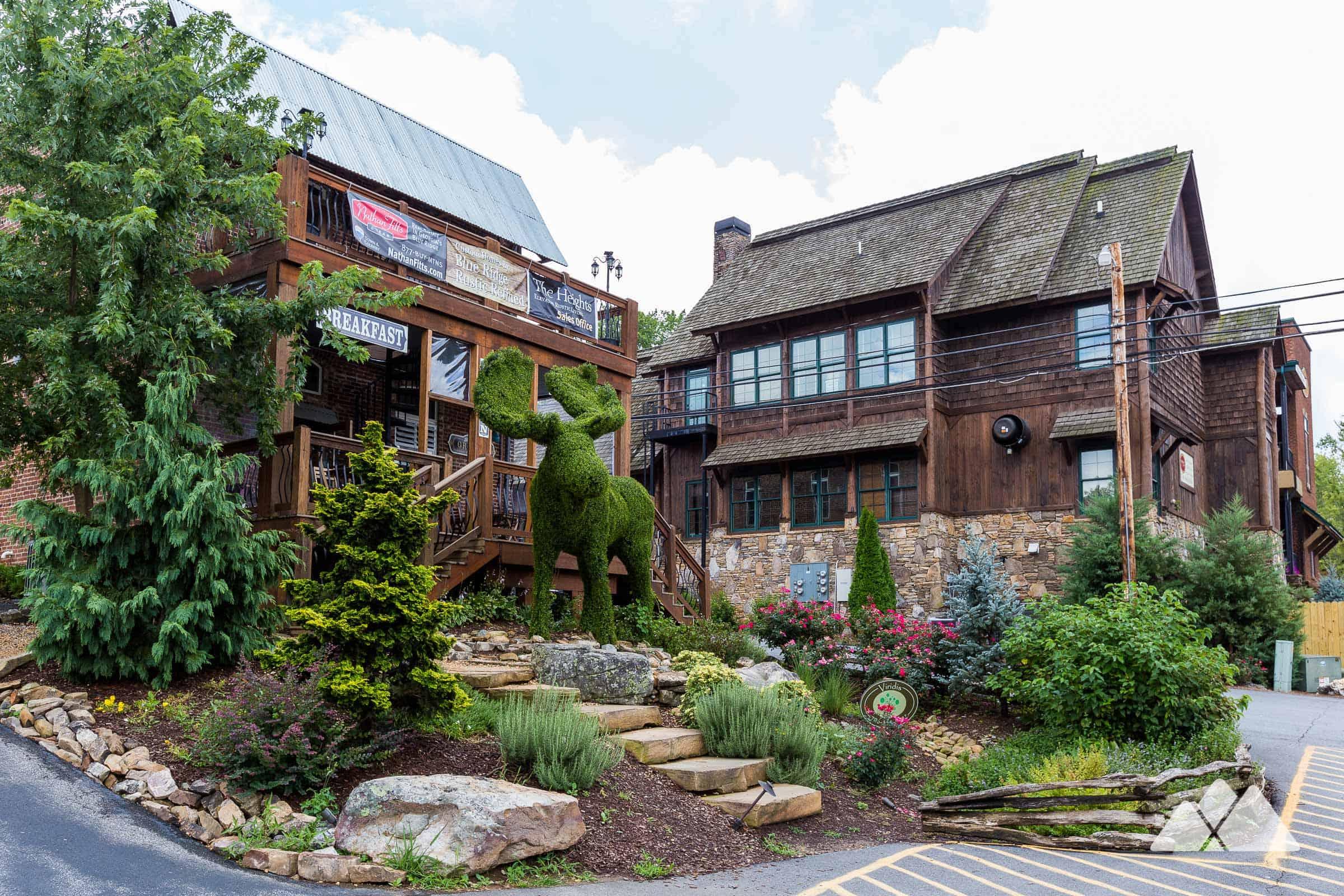 Top Outdoor Things To Do In Blue Ridge Ga Hiking Cabins