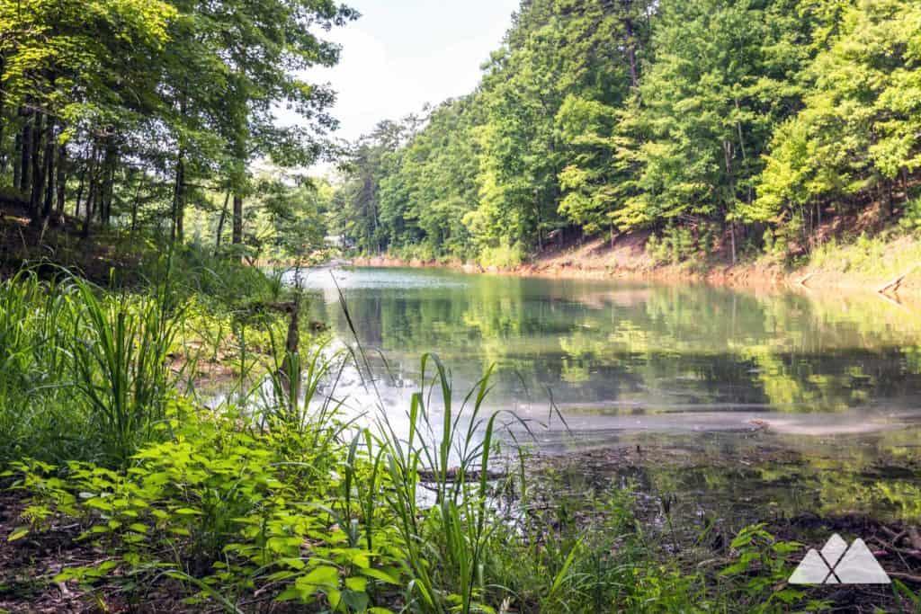 Carters Lake Oak Ridge Nature Trail Atlanta Trails
