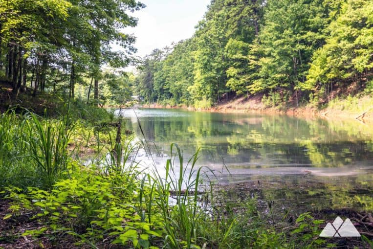 Carters Lake: hike the Oak Ridge Nature Trail to a quiet, grassy inlet on the lake's shore