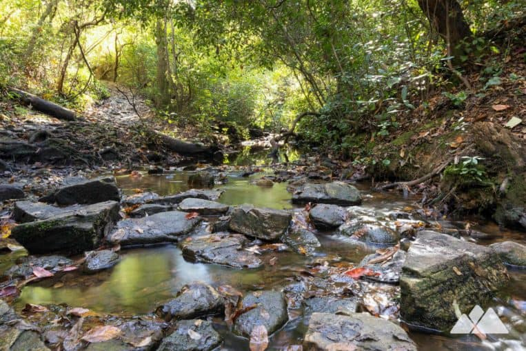 Cascade Falls: hike through a waterfall-filled forest, following Pine Mountain Trail in FDR State Park