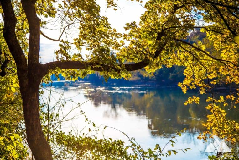 Chattahoochee Bend: hike the Riverside Trail to stunning views from the river's banks