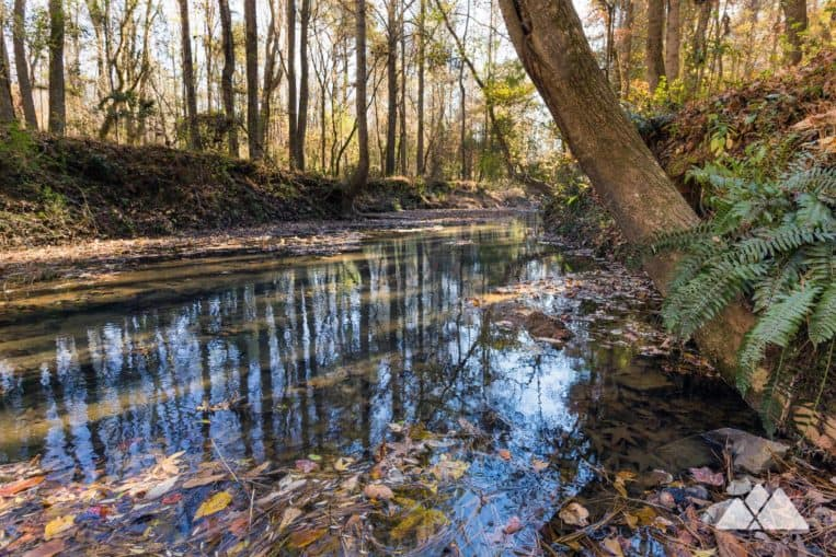 Cochran Mill Park: hike the Henry Mill Falls Trail through a beautiful forest to a tumbling waterfall near Atlanta