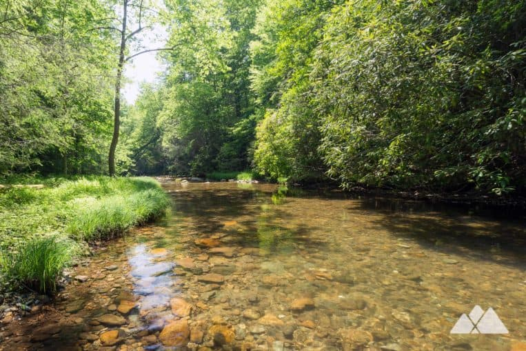 Conasauga River Trail: hike along a crystal-clear river in a lush, green valley in Georgia's Cohutta Wilderness