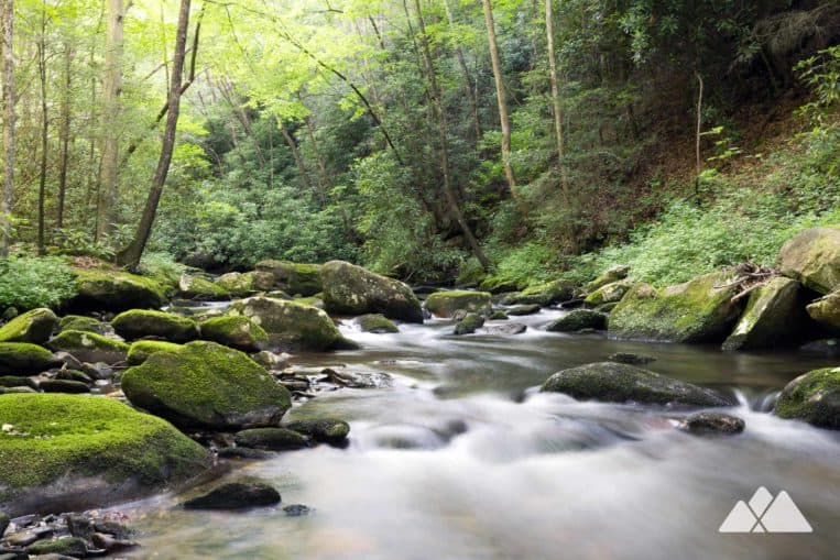 Conasauga River Trail: hiking the Cohutta Wilderness from Betty Gap